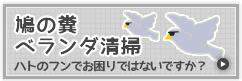 鳩対策・鳩駆除・鳩の糞被害を解決